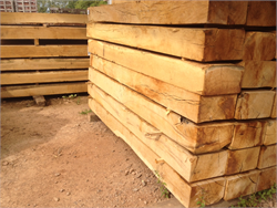 Large Freshly Sawn Green Oak Sleepers